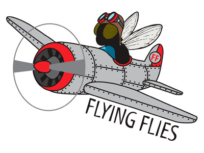 sq_flying_flies